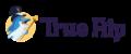 Revue TrueFlip – Classy Dolphin Casino